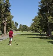 Robe Golf